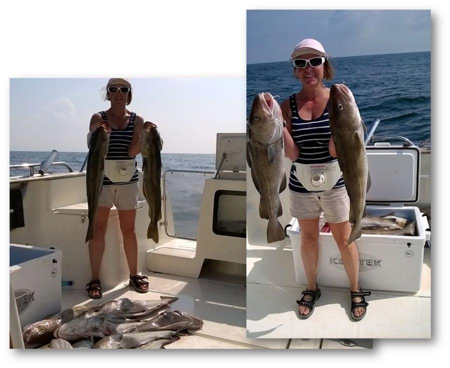 cod fishing Hampshire