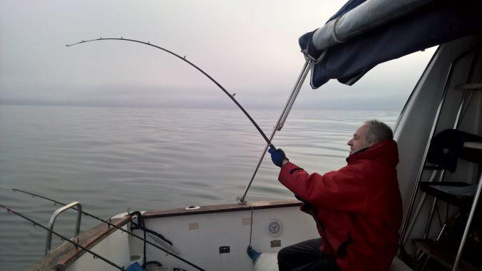 Conger fishing