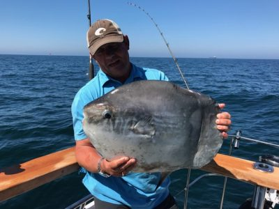Kev Johnson Sunfish 18-20lb