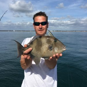Luke Scott Trigger fish