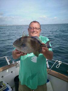 Bill Arnold Trigger Fish